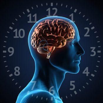 A mellékvese kifáradás és a cirkadián ciklus